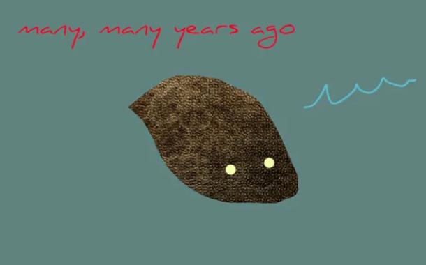 Например, так могли выглядеть первые в мире глаза.