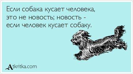 atkritka_1378137136_201
